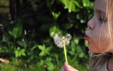 allergie primavera